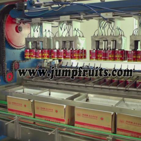 canned food automatic  packing machine