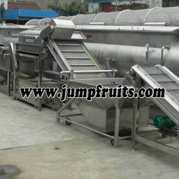 fruits washing amchine