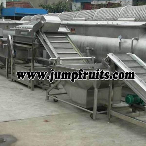 fruits washing amchine
